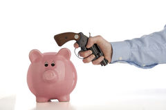 Robbing the piggy bank Stock Image