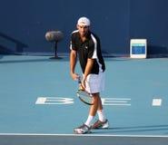 Robby Ginepri (USA), professional tennis player Royalty Free Stock Photo