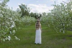 Robe blanche de port de belle fille blonde de l'adolescence avec les klaxons o de cerfs communs Photographie stock