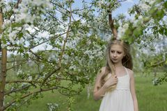 Robe blanche de port de belle fille blonde de l'adolescence avec les klaxons o de cerfs communs Photos stock
