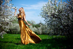Robe d'or photo stock