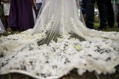 Robe de mariage fabuleuse avec des pétales dessus Photographie stock libre de droits