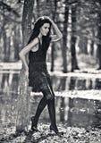Robe magnifique dans un arbre. Photo noire et blanche Photos libres de droits
