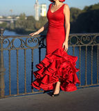 Robe rouge de flamenco Photos libres de droits