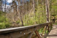 Robecsky potok kreek in Peklo-Vallei van houten voetgangersbrug in het gebied van de lentemachuv kraj Royalty-vrije Stock Afbeelding