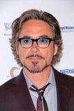 Robert Downey Jr Stock Photos