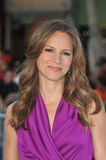 Susan Downey Royalty Free Stock Photos