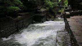 Robert H Treman SP. Robert H. Treman State Park - Finger Lakes Area - New York stock footage