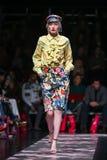 Robert Przecina mody kolekcję obraz royalty free