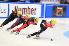Robert Seifert - short track Royalty Free Stock Photo
