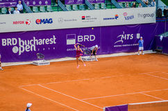 Roberta Vinci playing the QF of Bucharest Open WTA. Roberta Vinci playing during the QF of Bucharest Open WTA, July the 11th, 2014, tennis match against Petra Stock Image