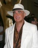 Roberto Shapiro Imagen de archivo libre de regalías