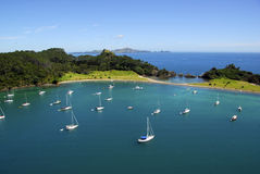 Roberton Island - Bay of Islands, New Zealand Royalty Free Stock Image