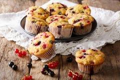 Robić deser: muffins z jagodową mieszanką rodzynku zakończenie Obraz Stock