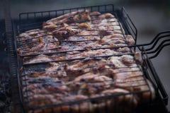 Robić grillowi na grillu Weekendowy cookout Kulinarny outside, pinkin fotografia royalty free