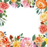 Robić kwiecisty wianek z koralowymi peoniami i różowymi różami Akwarela kwiecisty ramowy szablon dla ślubnych zaproszeń oprócz da ilustracja wektor