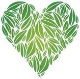 robić serce duży zieleni liść Obrazy Royalty Free