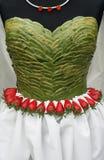 robić suknia liść nakrywają Zdjęcia Stock