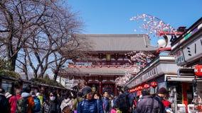 Robić zakupy i Uwielbiać w Asakusa fotografia royalty free