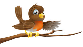 Robin bird on branch pointing Royalty Free Stock Photo