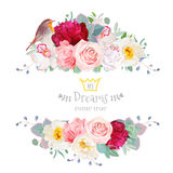 Robin bird and flowers vector design frame Royalty Free Stock Image