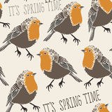 Robin bird pattern Stock Photography