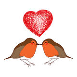 Robin Birds In Love Kissing Royalty Free Stock Image