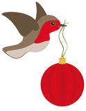 Robin and Christmas bulb. A robin in flight with a red christmas bulb Stock Images