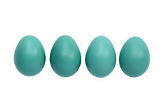 Robin Eggs Stock Image
