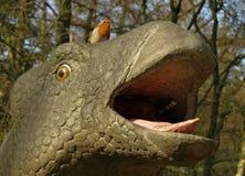 Robin Erithacus rubecula på en dinosaurie Arkivbilder