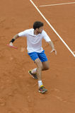 Robin Haase Royalty Free Stock Photos
