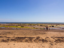 Robin hoo beach Royalty Free Stock Photography