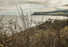 Robin Hood`s Bay - a sunny day by the sea -a view through branches. This image shows a view of a sea in Robin Hood`s Bay, Yorkshire. It was taken on a sunny day royalty free stock photography