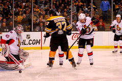 Robin Lehner Ottawa Senators Stock Image