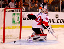 Robin Lehner Ottawa Senators Royalty Free Stock Photography