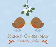 Robin Love Christmas images stock