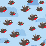 Robin pattern. Seamless background with flying birds in the sky Stock Images