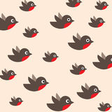 Robin pattern Royalty Free Stock Image