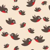 Robin seamless pattern Stock Photo