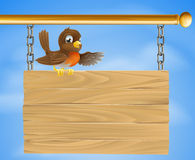 Robin sitting on old sign Royalty Free Stock Image