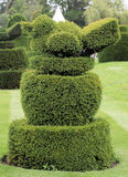 Robin topiary Royalty Free Stock Photography
