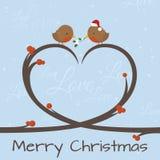 Robin Tree Love Royalty Free Stock Photography