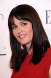 Robin Tunney Stock Photography