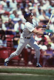 Robin Yount Stock Photography