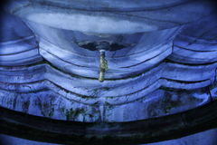 Robinet d'eau exotique Photos stock