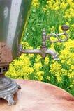 Robinet de samovar de Tableau Image libre de droits