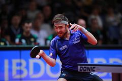 ROBINOT Quentin from France forehand. 2017 European Championships - Semi final. Luxembourg Stock Image