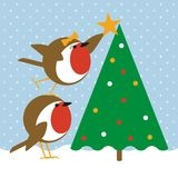 Robins Christmas Tree Stock Photography