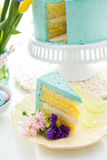 Robins egg cake Royalty Free Stock Photo