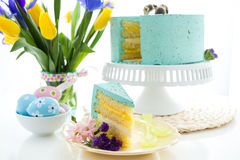 Robins egg cake Royalty Free Stock Photos